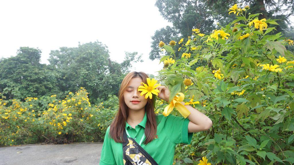 Ngắm hoa Dã Quỳ nở rộ cùng học sinh Trường Trung cấp Du lịch Hà Nội DSC09703